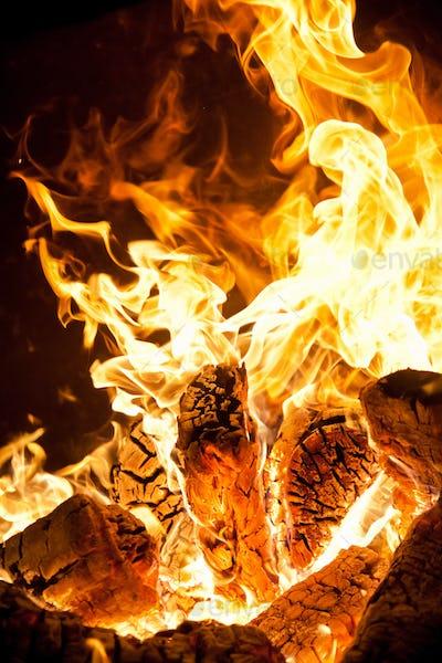 Close-up of flames the bonfire