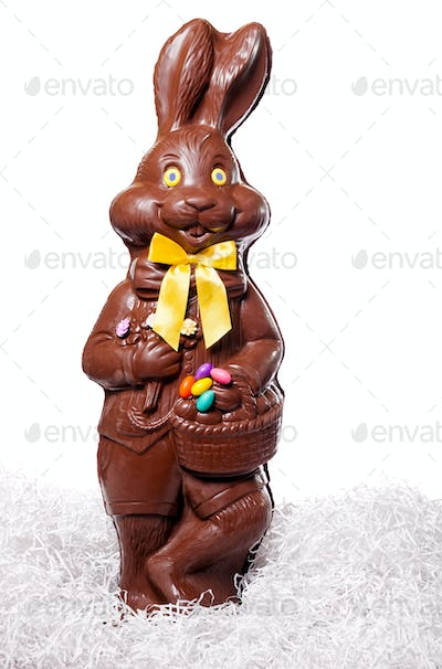 Tall Chocolate Bunny Isolate on White