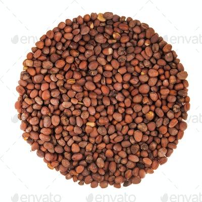 Circle of Radish Seeds Isolated on White