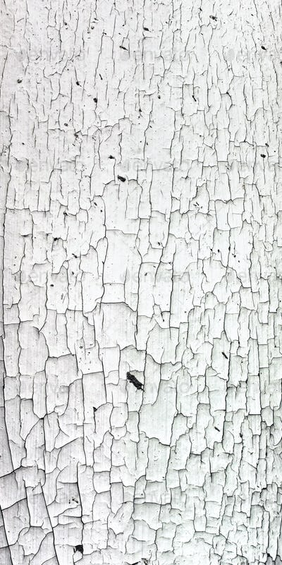 Old cracky white paint texture on wood