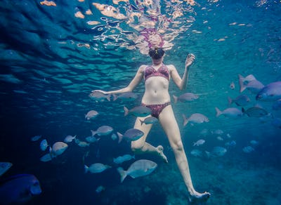 Girl Snorkeling and Surrounded with Chopa Fish