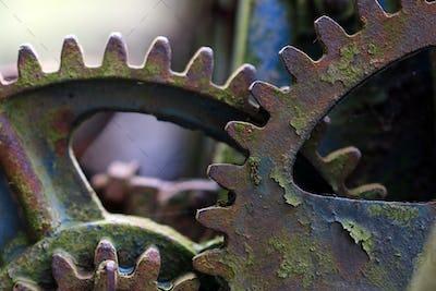 Forgotten, broken mechanism at the dump