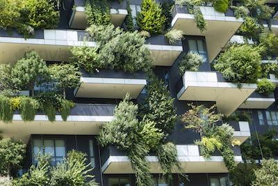 The Vertical Wood buildings in Milan.