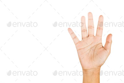 Hand gesturing number five against white background.