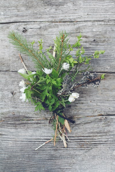 bouquet of wild forest flowers