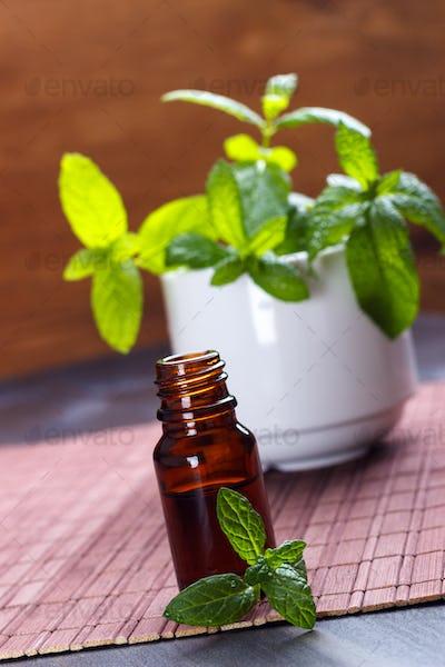 Mint essential oil