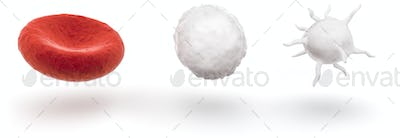 blood cells isolated on white background, 3D illustration