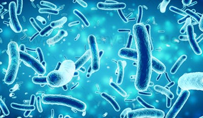bacteria in a blue background, 3D illustration