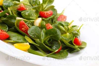 Salad with arugula and spinach