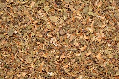 herbal dry tea mix