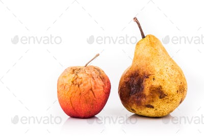 Rotten and decomposing red apple and pear on white background
