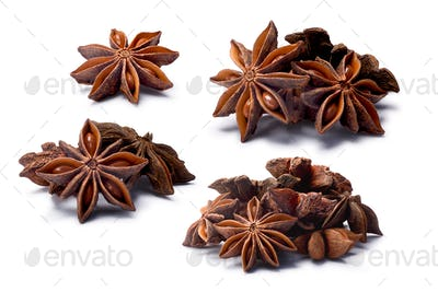 Set of Star anise (dried Ilicium fruits), paths