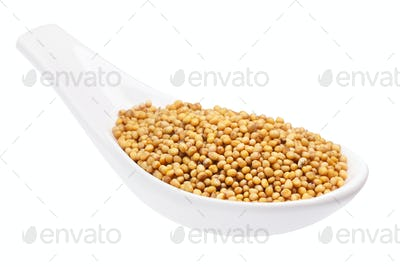 Spoon of yellow mustard seeds, path
