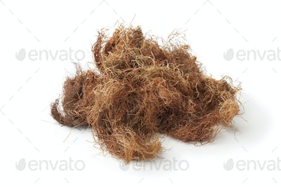 Bunch of dried corn silk
