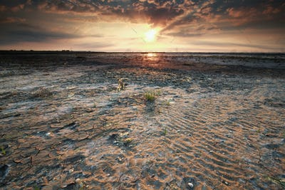 beautiful gold sunset on Wadden sea coast