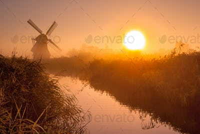historic windmill in a polder