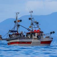 mackerel hook line fishing vessel