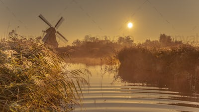 Dutch windmill in foggy wetland