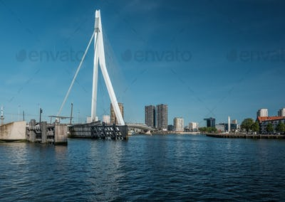 Rotterdam city cityscape with Erasmus bridge, South Holland, Netherlands.
