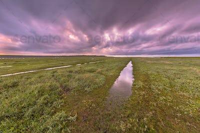 Sunset over ditch in tidal marsh