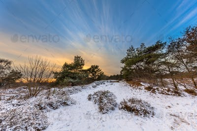 Winter landscape with thin layer of snow