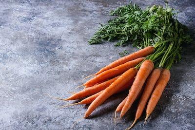 Bundle of fresh carrot