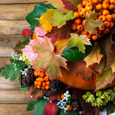 Fall decor with rowan and autumn leaves