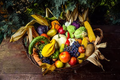 Basket of organic bio fruits and vegetables, autumn goods after harvest