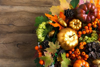 Thanksgiving greeting background with berries and cones