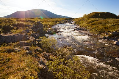sunny landscape Norway mountains Dovrefjell river