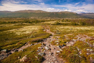 mountain landscape Norway national park Dovre