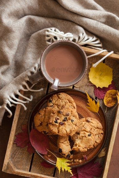 hot chocolate warming drink wool throw cozy autumn leaves cookie
