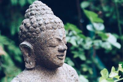 Buddha sculpture on green nature
