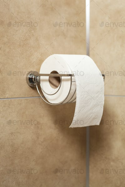 Toilet paper roll in holder