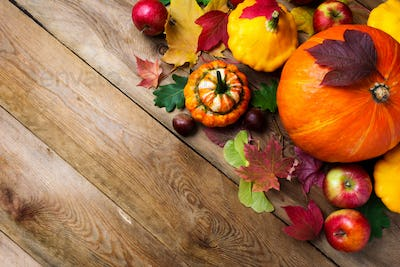 fall greeting background with yellow gourd, copy space.