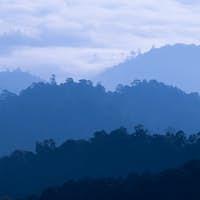 Morning Mist at Tropical Mountain Range, Thailand