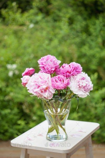 beautiful pink peony flowers bouquet in garden