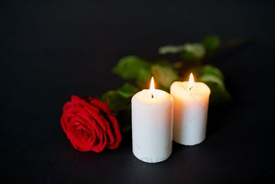 red rose and burning candles over black background