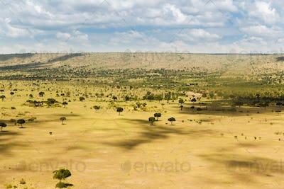 maasai mara national reserve savanna at africa