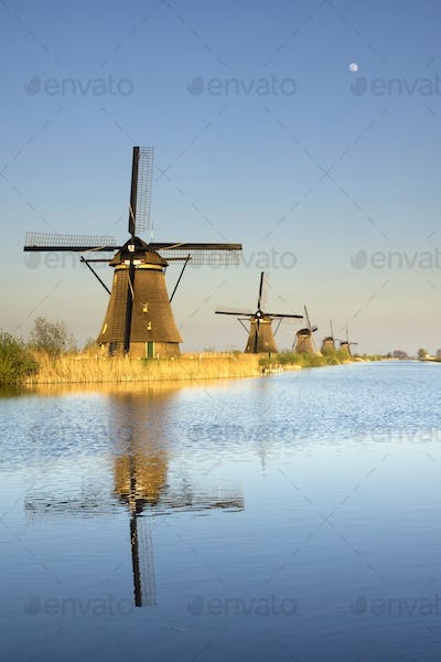 The windmills in Kinderdijk