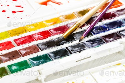Artistic watercolor paints and two brushes