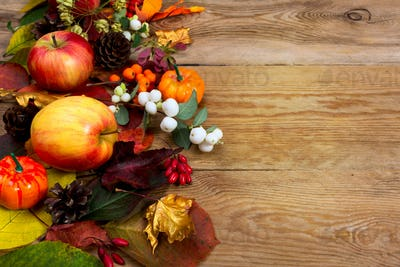 Fall greeting with apples, white berries, golden maple leaves, c