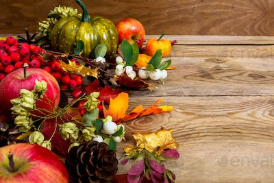 Fall background with apples, white berries and seeds, copy space