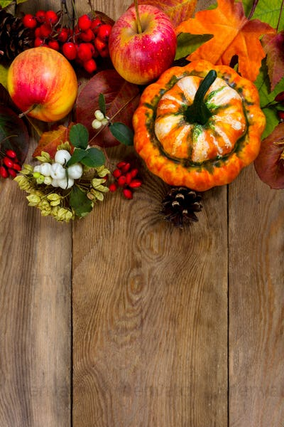 Thanksgiving greeting with decorative pumpkin, white berries, co