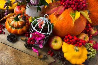 Fall background with pumpkins, apples, cones and pink flowers