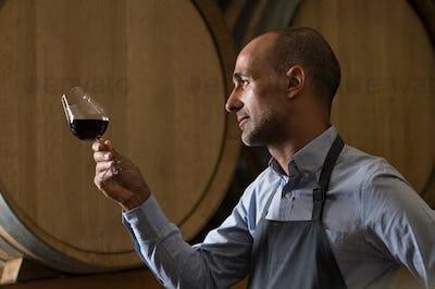 Sommelier checking wine