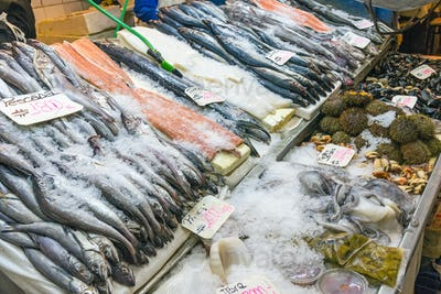 Seafood and fish at a market in Santiago