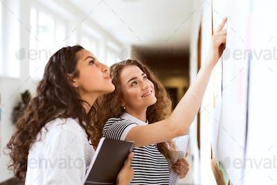 Two teenage girls in high school hall during break.