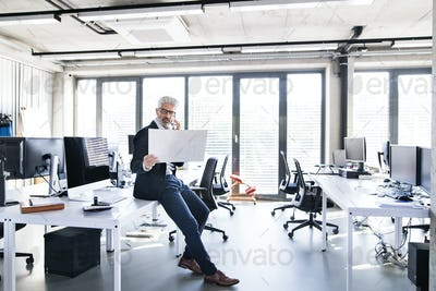 Mature businessman in the office making a phone call.