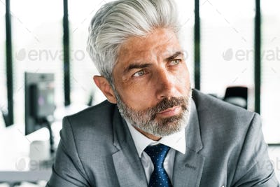 Mature businessman in gray suit in the office.